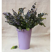 """Зелень """" Эвкалипт, крупные  листья   """"    зеленый с фиолетовым"""