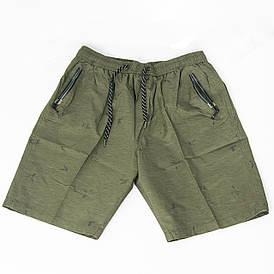 Мужские котоновые шорты до колен (арт. 23-9665) Зелёный, XL