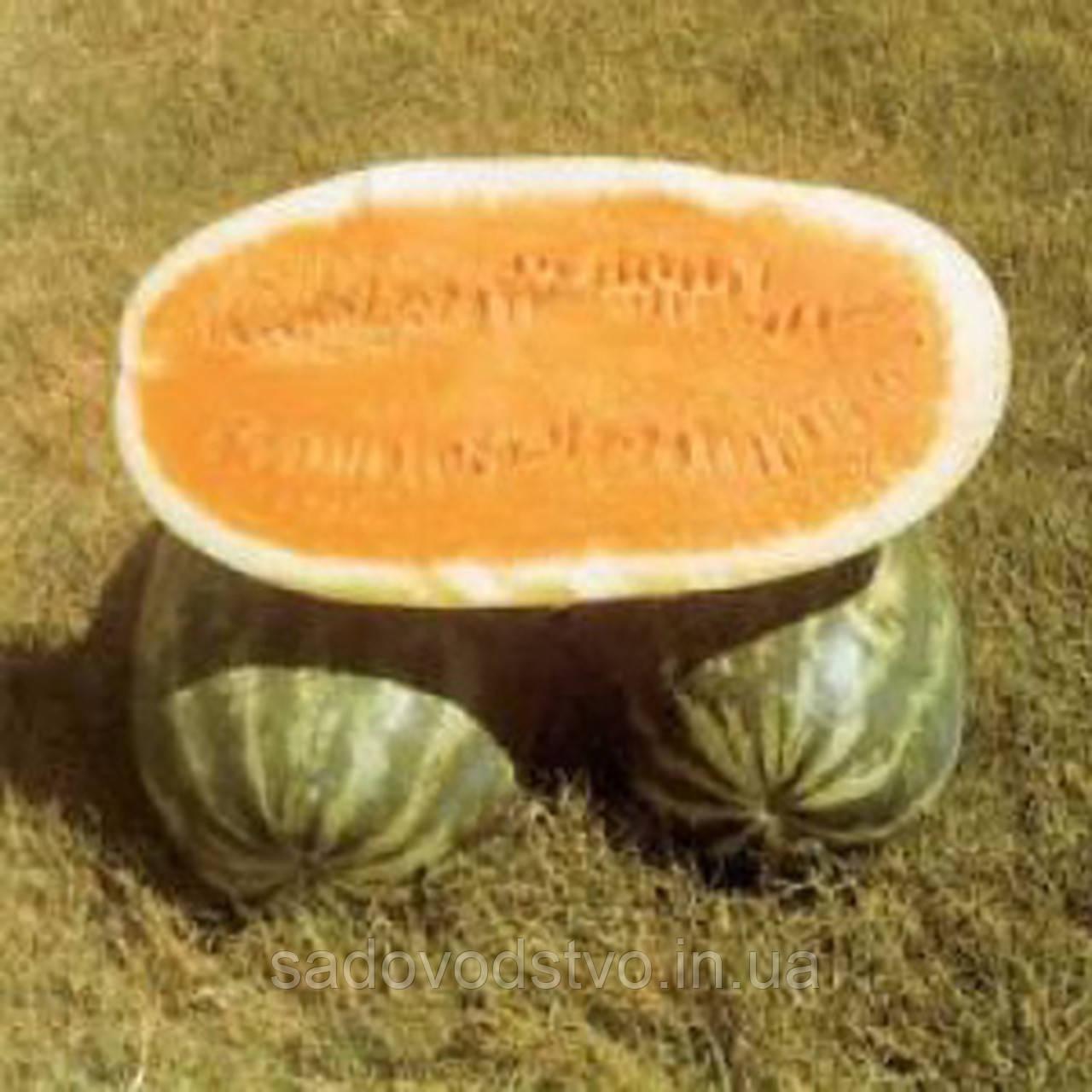 Арбуз Тендерсвит оранжевый