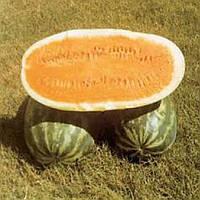 Арбуз Тендерсвит оранжевый, фото 1