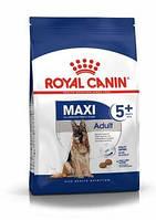 Сухий корм Royal Canin Maxi Adult 5+ (Роял Канін Максі Эдалт 5+) 15 кг для великих дорослих собак від 5 років