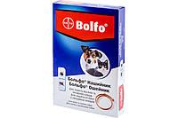 Ошейник Bayer Bolfo (Больфо) против блох и клещей для кошек и собак, 35 см