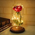 РОЗА в колбе с подсветкой| Вечная роза| Цветок в колбе| КРАСНАЯ, фото 3