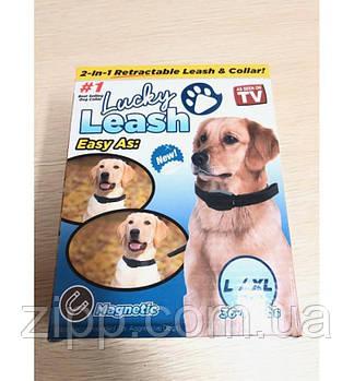 Повідець для собак регульований Lucky Leash 2 в 1