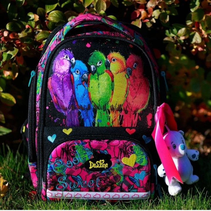 Школьный ранец в 1-4 класс рюкзак для девочки в наборе сменка и пенал Попугайчики DeLune 10-004