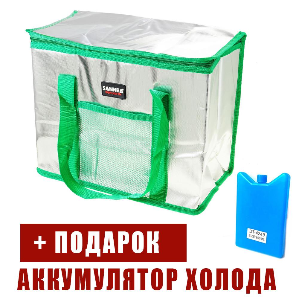 Сумка холодильник. Термо сумка Термосумка + аккумулятор холода. Сумка термос