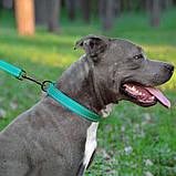 """Нашийник для собак """"Active""""BronzeDog""""світловідб. ментол застіб.пластик Обхват шиї 35-45смШир-25мм, фото 5"""