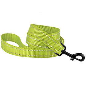 Поводок для собак капроновый со светоотражением салатовый 16мм/152см Bronzedog Active (60/1305)