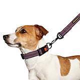 Ошейник для собак ТМ BronzeDog брезент размер S черри (обхват шеи 25-33см ширина 20мм), фото 4