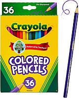 Набор карандашей Crayola Colored Pencils 36 штук (684036)