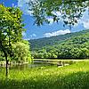 Жить в гармонии с природой — лучшая защита от болезней!