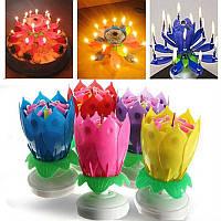 Свеча для торта музыкальная Тюльпан