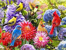 Картины по номерам Птицы