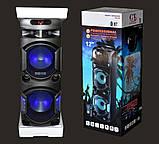 Колонка акумуляторна Leisound partybox BIG c радіомікрофоном (300W/USB/BT/FM/), фото 9