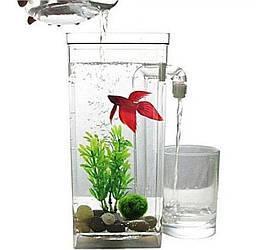 Маленький акваріум, який самоочищається  My Fun Fish наноакваріум для риб - акваріумний набір