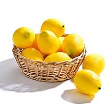 Искусственный лимон,муляж лимона.Лимон для декора., фото 3