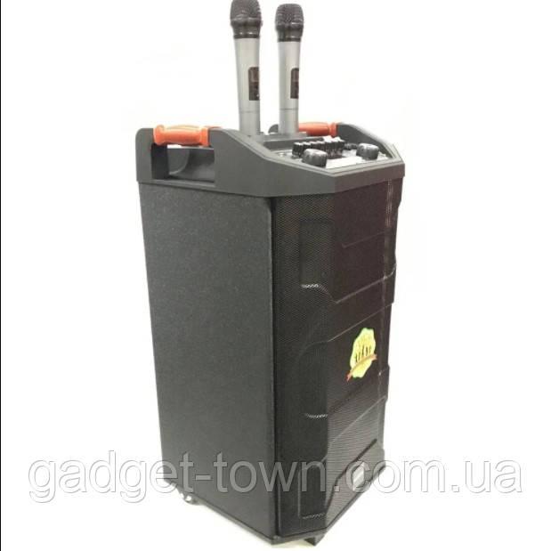 Колонка аккумуляторная с радиомикрофонами ZXX-6666 (FM/USB/BT/200W)