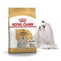Сухой корм Royal Canin Maltese Adult для мальтийской болонки, 500 г