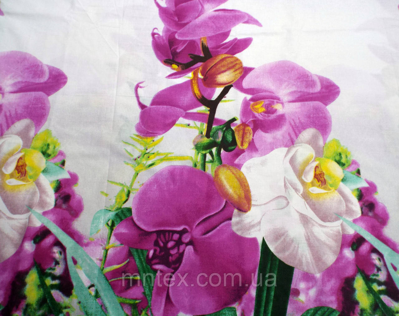 Бязь Голд Квітуча орхідея