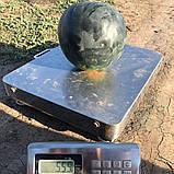 Насіння кавуна INX 1748 F1 (100 нас.) Innova Seeds, фото 2
