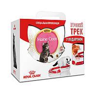 АКЦИЯ! Сухой корм Royal Canin Kitten Maine Coon для котят, 4КГ + Игровой трек в подарок!