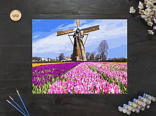 """Картина по номерам """"Поля тюльпанов с мельницей в Голландии"""" 40х50 см"""