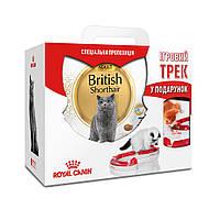 АКЦИЯ! Сухой корм Royal Canin British Adult для британских кошек, 4КГ + Игровой трек в подарок!