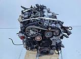 Под заказ Мотор (Двигатель) Audi A4 B7 Q5 8r 2,0 TDI CAGA143л.с  Ауди 2008-2014г.в., фото 2