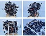 Под заказ Мотор (Двигатель) Audi A4 B7 Q5 8r 2,0 TDI CAGA143л.с  Ауди 2008-2014г.в., фото 5