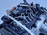 Под заказ Мотор (Двигатель) Audi A4 B7 Q5 8r 2,0 TDI CAGA143л.с  Ауди 2008-2014г.в., фото 7