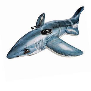 Детский надувной плотик для катания Intex 57525 «Белая Акула», 173 х 107 см