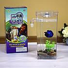 ОПТ Акваріум самоочисний з підсвічуванням My Fun Fish 2л з декоративними камінчиками на дно, фото 7