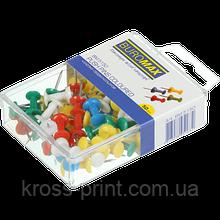 Кнопки, цвяхи кольорові 50шт круглі пластикова упаковка ВМ 5150 10/360шт/уп