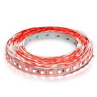 Светодиодная лента OEM ST-12-2835-120-R-20 красная, негерметичная, 1м