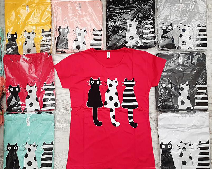 Жіноча футболка з модними котами 42-46 (в кольорах)