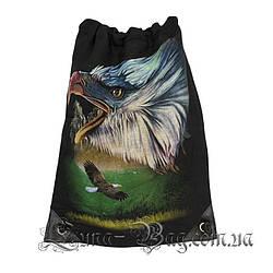 Сумка для обуви орел (Размер 50*32)(В упаковке 6 шт)