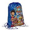 Дитячий рюкзак з малюнком (PAW Patrol) 3 Кольори Синій.В упаковці 12 шт, фото 2