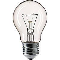 Лампа EL D55 100W E27