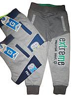 Спортивные брюки на мальчика оптом, Grace, размеры 98, арт. В 60069, фото 1