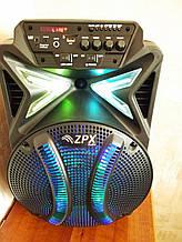 Колонка аккумуляторная 12 дюймов с микрофоном ZPX-7782/120W (USB/FM/Bluetooth/TWS)
