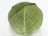 Семена капусты Структа F1 1000 шт  Takii Seeds / ТАКИ СИДС