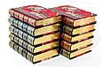 """""""Новий енциклопедичний словник образотворчого мистецтва"""" подарункове видання 10 томів в шкіряній палітурці, фото 5"""