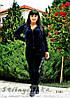 Велюровый женский костюм Адидас большого размера синий