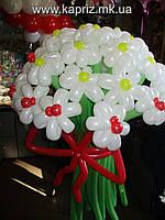 Букет из 25 ромашек с божьими коровками из шаров