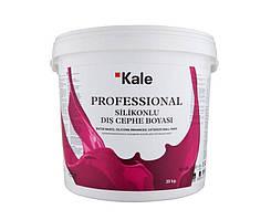 Краска фасадная силиконовая Professional Silikon Exterior. Kale