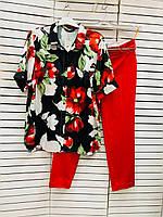 Блузка женская черная с цветами Jeanne DArc 20-20801