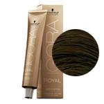 Краска для волос Igora Absolutes 7-50  средний блондин золотистый натуральный