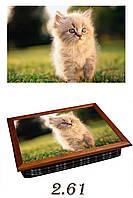 "Поднос на подушке ""Котёнок рыжий"", фото 1"