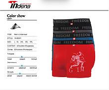 Трусы мужские боксеры стрейчевые х/б Indena underwear 95041, (в упаковке разные размеры)хлопок, 30031377