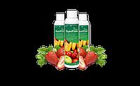 AGROFLORA (АгроФормула) - добриво для полуниці та суниці. Інтернет магазин 24/7, фото 1